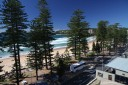 Manly Views