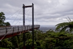 bruxner-park-new-sealy-lookout