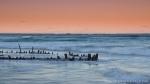 woolgoolga-buster-sunset-1