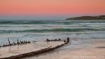 woolgoolga-buster-sunset-2