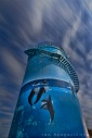 Woolgoolga Watertank
