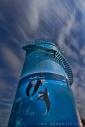 Woolgoolga Watertank